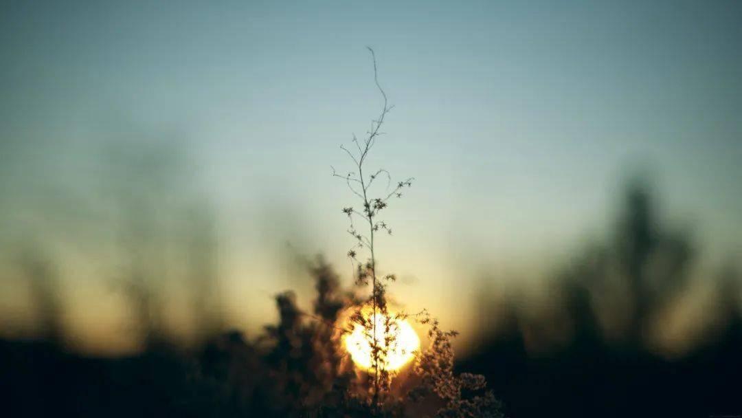 早安正能量拼搏语句唯美 正能量工作语录早安心语