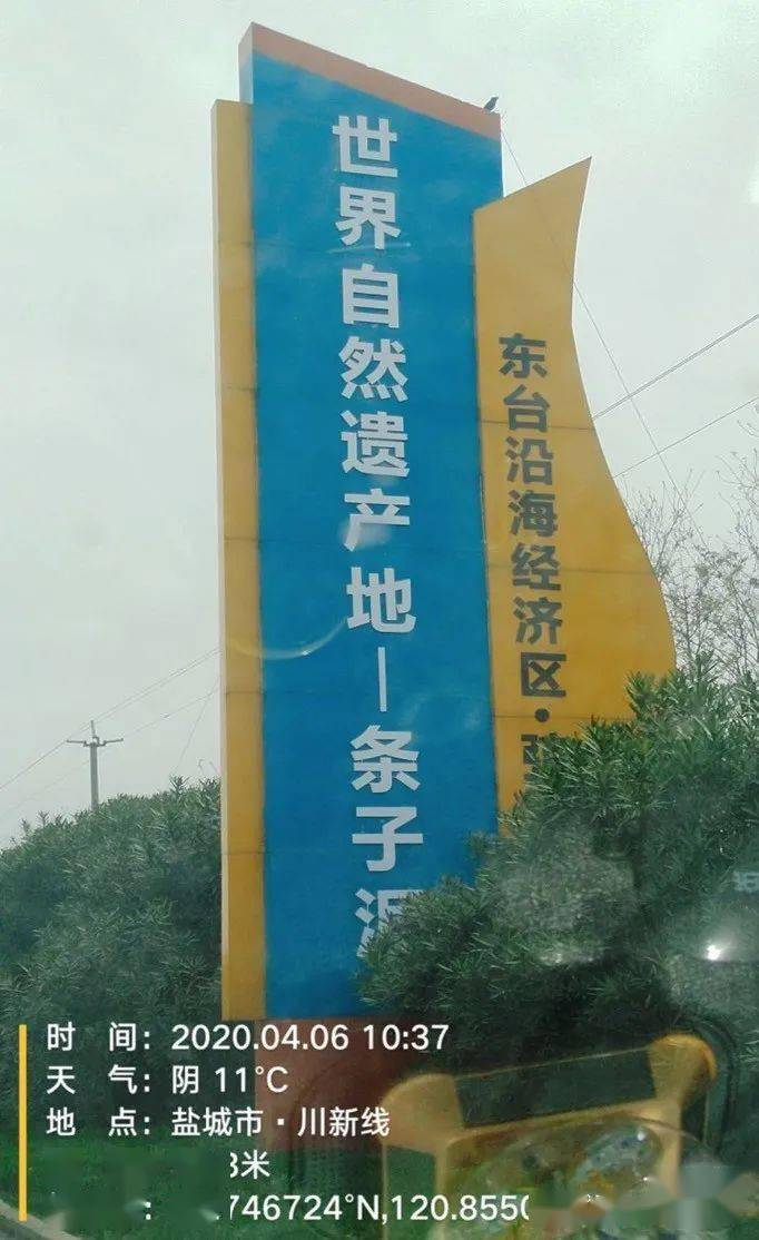 志愿者来信:缘何虾业养殖不减反增?绿会政研室关注江苏首项世界自然遗产保护