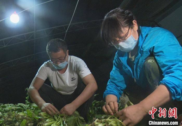 """新疆兵团""""访惠聚""""工作队抗疫记:""""白加黑""""服务护民众健康"""