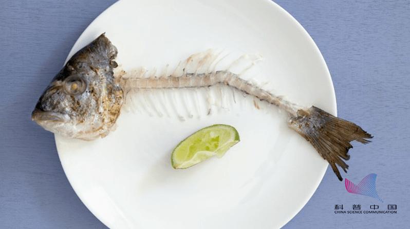 【悲剧】广州男子鱼刺卡喉拖延3天不幸身亡!鱼刺卡喉千万不能这样做