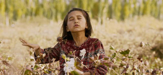 专访《第一次的离别》导演王丽娜:文艺片的遗憾与转机