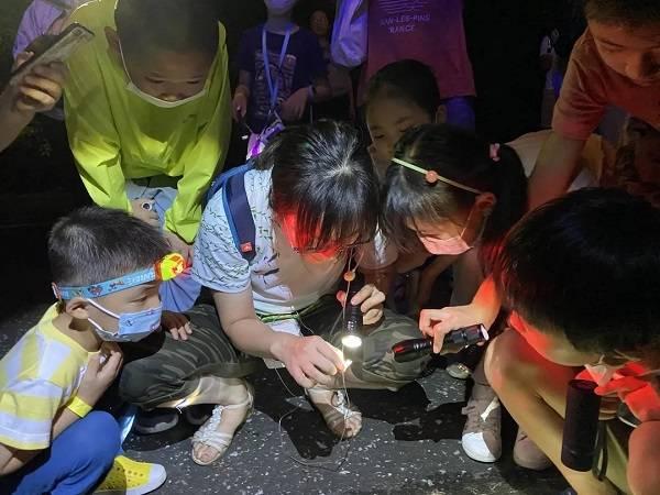 """大自然 担心孩子""""缺失大自然""""?上海有了""""自然学校"""""""