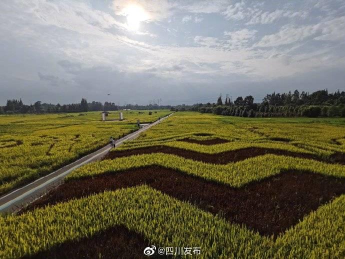 都江堰水利工程灌溉面积已扩展到1076万亩造就天府之国
