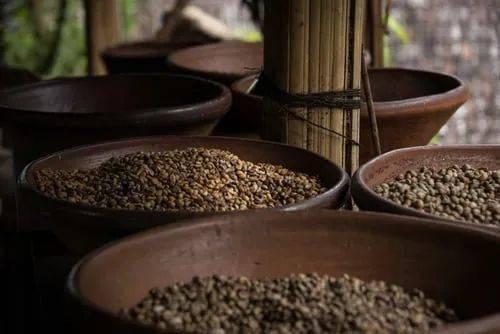 你知道人工添加咖啡的危害吗? 防坑必看 第3张