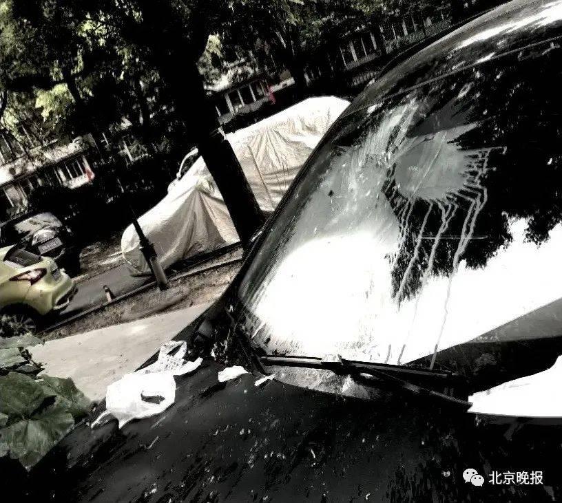 北京一男子抛鸭血粉丝汤砸坏楼下越野车,拘!