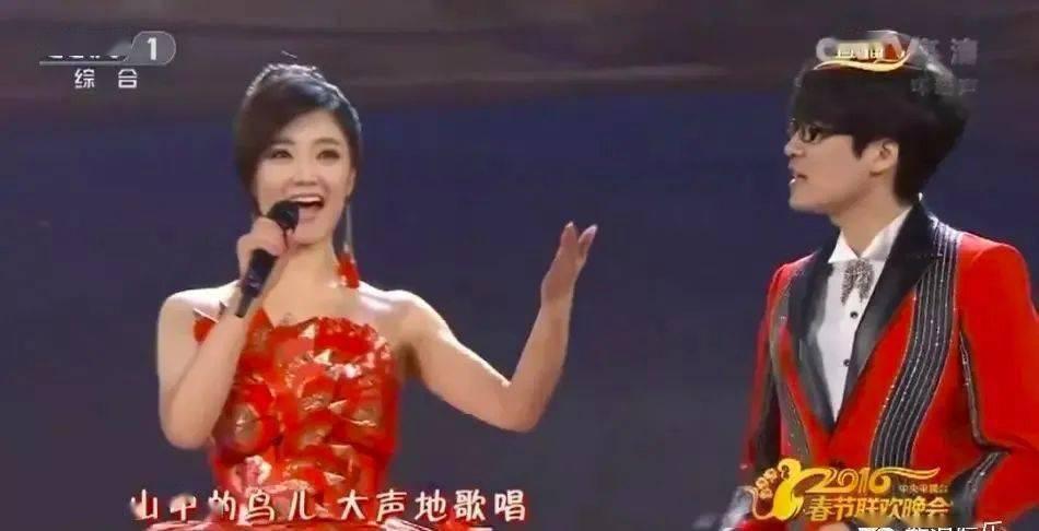 又一对明星夫妻离婚:4次上春晚,红遍全中国,却婚后4年走散,他们到底怎么了?_王小玮