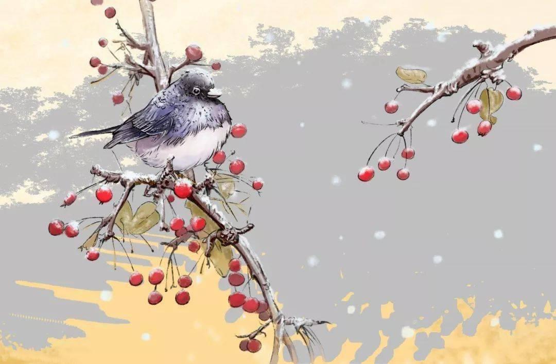 今日小雪!迎冬小雪至,应节晚虹藏