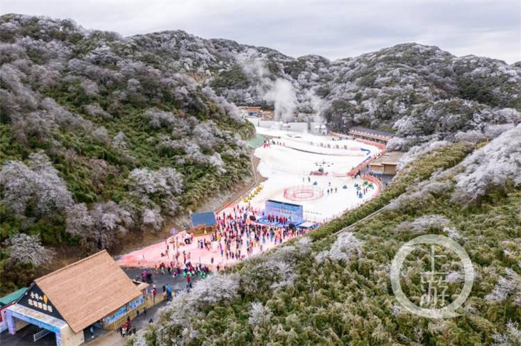 来金佛山看粉色的雪吧!10万方滑雪场让你在冬日尽情撒欢