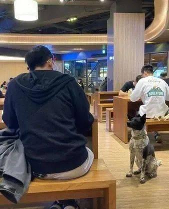 同学吃饭遇黑狗讨食,可过一会再看,这货居然换衣服了