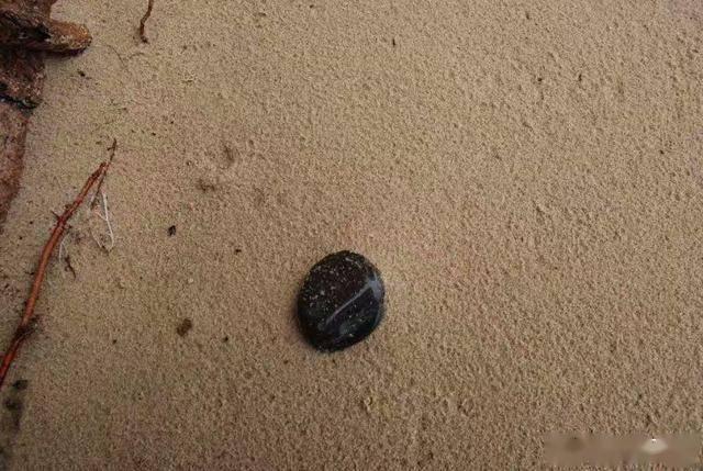 赤峰旅行奇遇,命名《石头记》