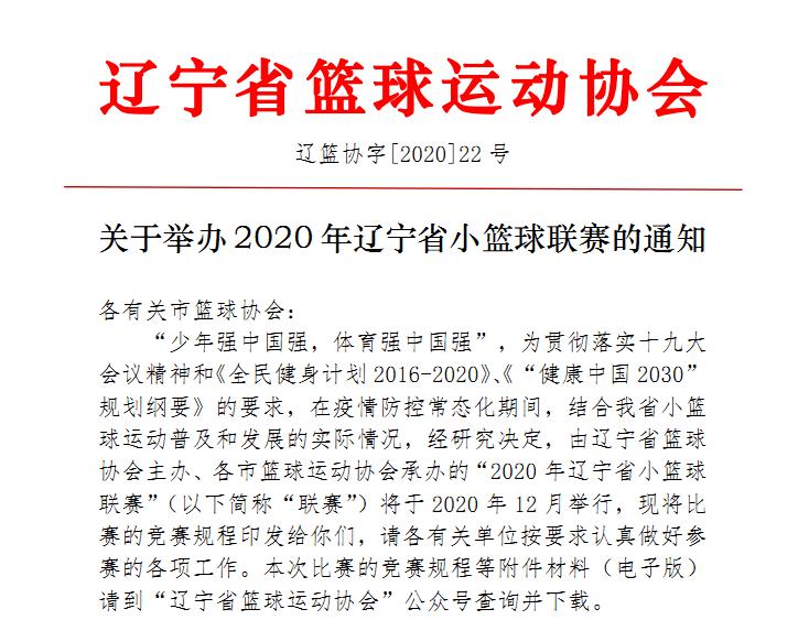 2020年辽宁省小篮球联赛沈阳赛区竞赛规程
