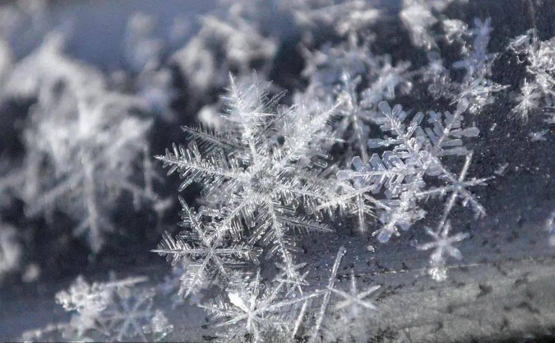 格玉【汉江诗歌】我与雪的距离