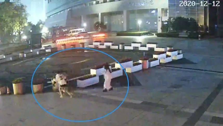 俩姑娘凌晨结伴走在街头 扭头一看吓得狂奔百米后倒地(图)