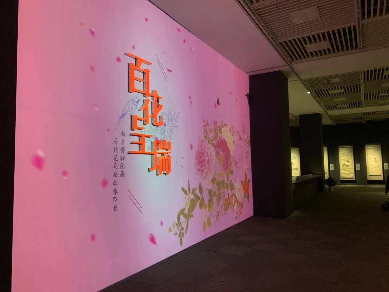 南博展览史上最强大花鸟画阵容来了!超半数藏品首公开,总有一款国宝get你!
