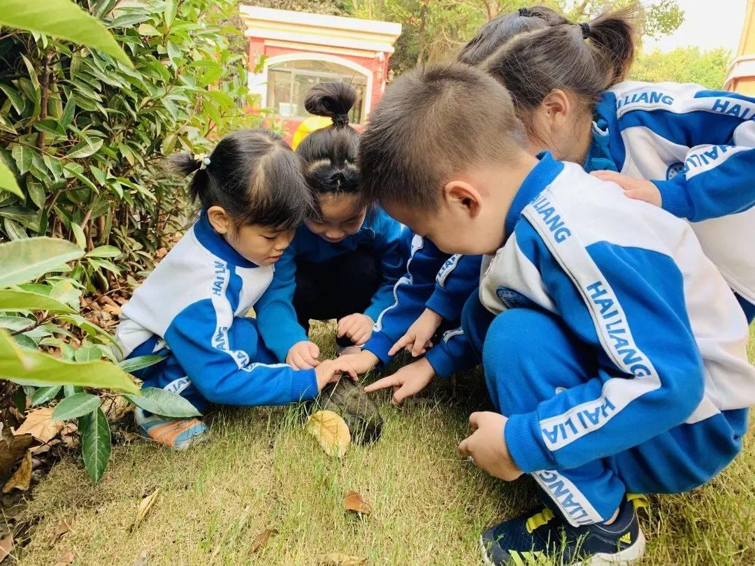 萧山这所幼儿园开启春季招生,园区大环境好,背景实力雄厚!超40%老师是研究生学历  第8张