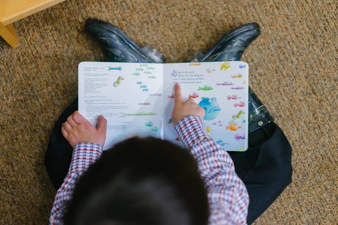 教育的意义在于唤醒智慧,培养自由而完整的人  第5张