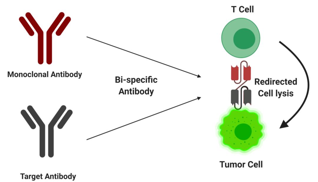 新冠病毒,溶瘤病毒?奇金淋巴瘤患者感染了新冠病毒,体内的肿瘤消失了