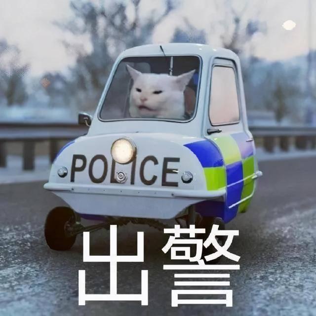 """""""气""""死接警员 拢共分几步?!"""