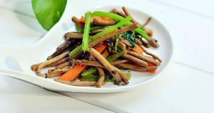 茶树菇的10种好吃做法,营养美味,做给家人尝尝吧!