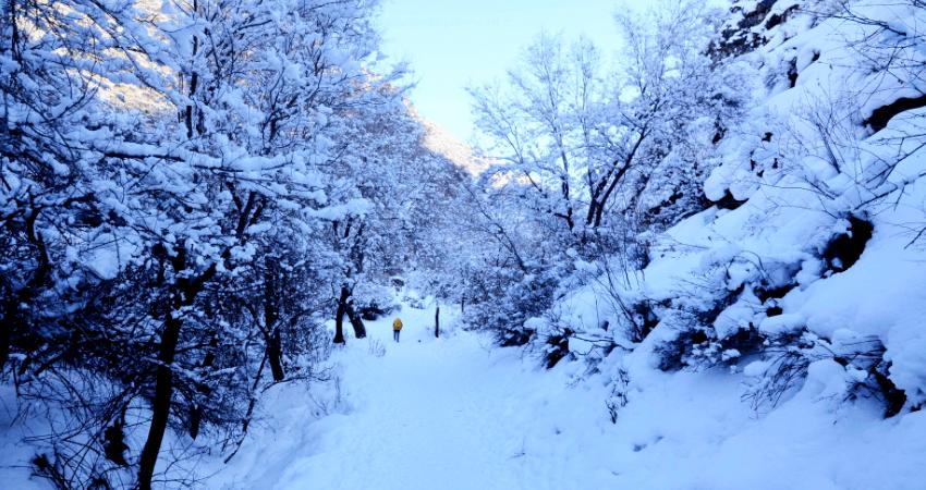 【西游户外】1月17日(周日)东山奇石寨  第7张