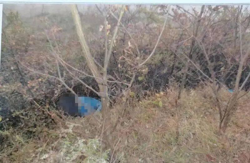 昭通的小树林出现了一具无名男尸!14年了,杀人的女子终于抓到了!
