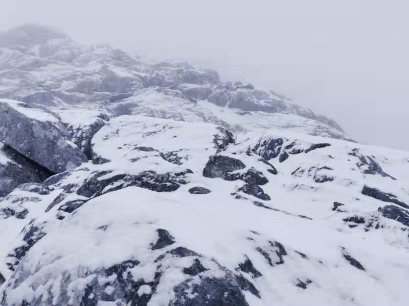 小编邀你来看雪