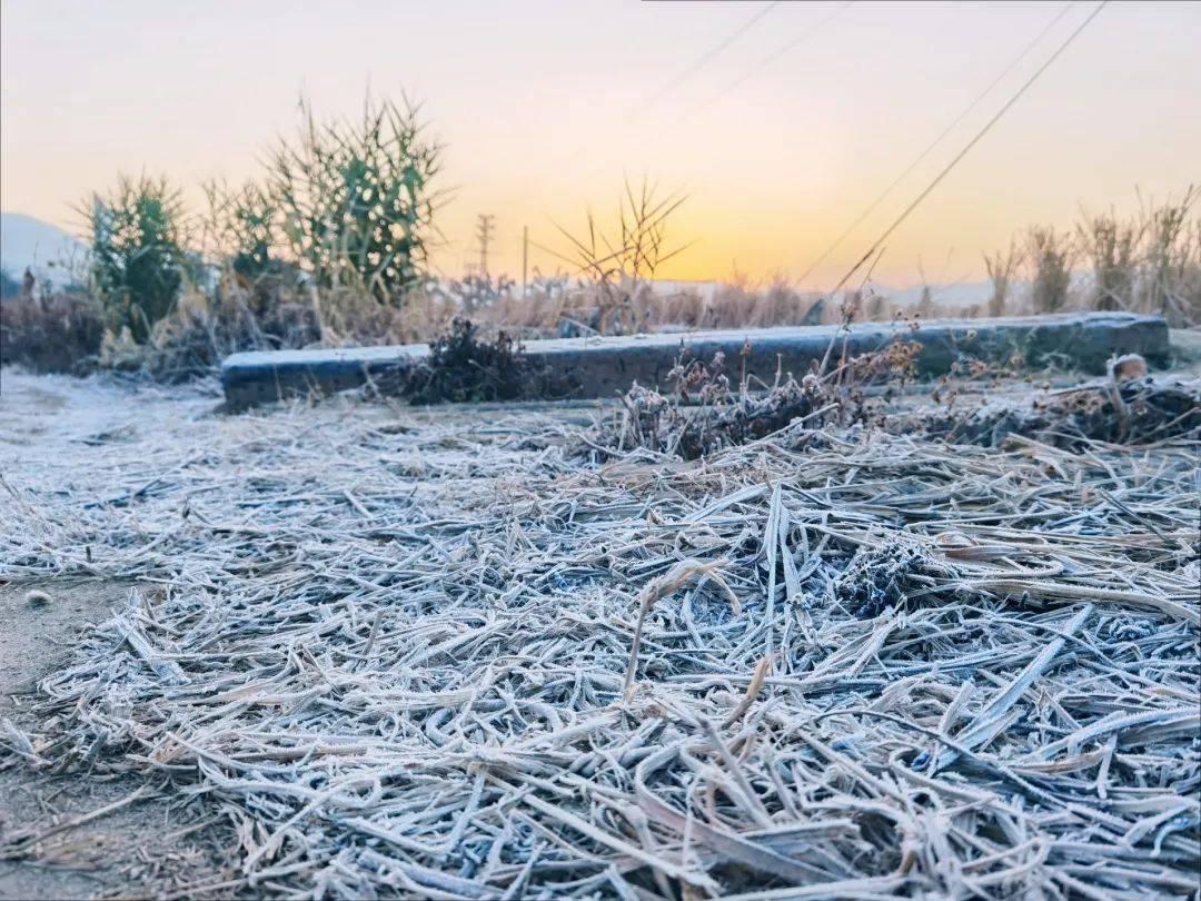 寒潮过境,韶关气温回升!但周末,过山车式降温又来了!