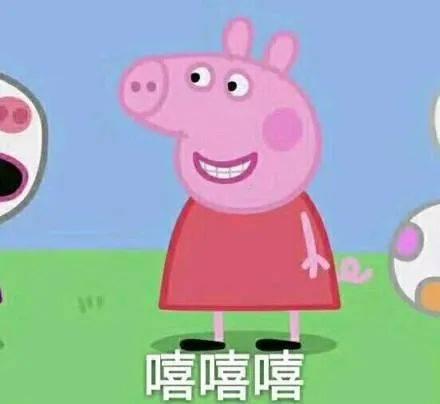 广东食疗养生汤——五红饮,补血益气,多喝有益身心健康哦!