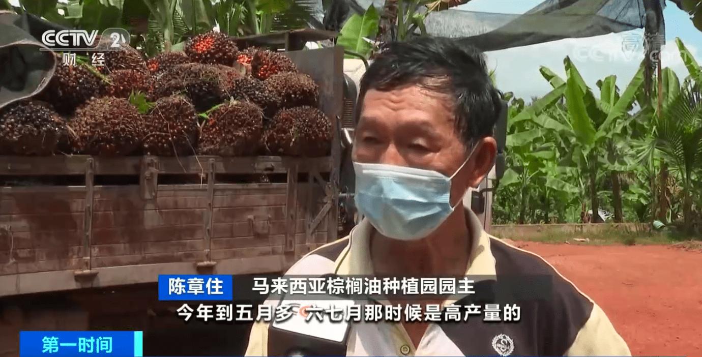 棕榈油期货价格创近10年最高!劳动力短缺、出口放缓,马来西亚棕榈油价格波动起伏
