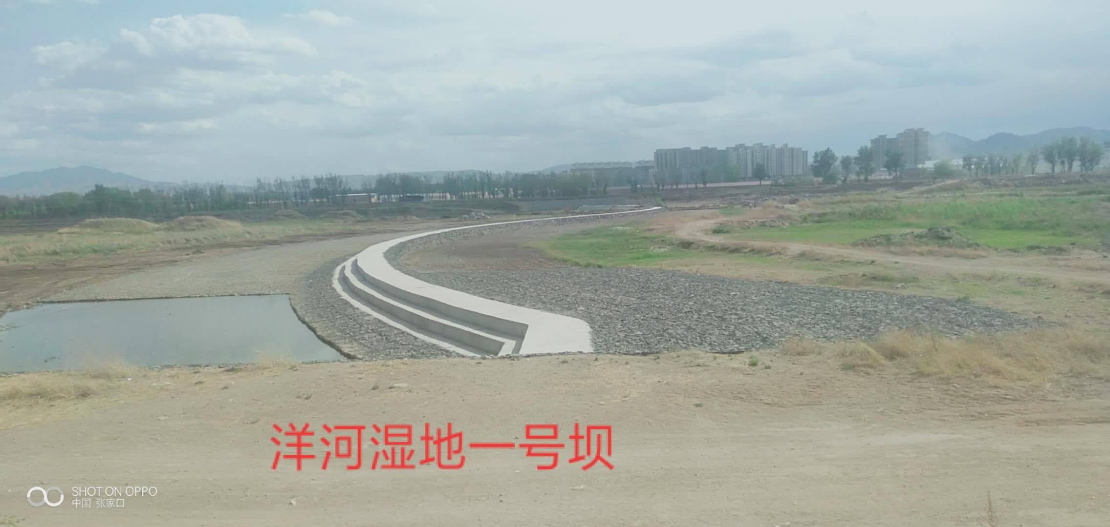 河北:宣化区洋河河道生态治理