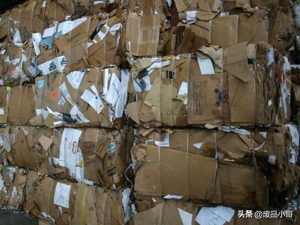 废纸回收多少钱一斤 今日废纸价格表插图(1)