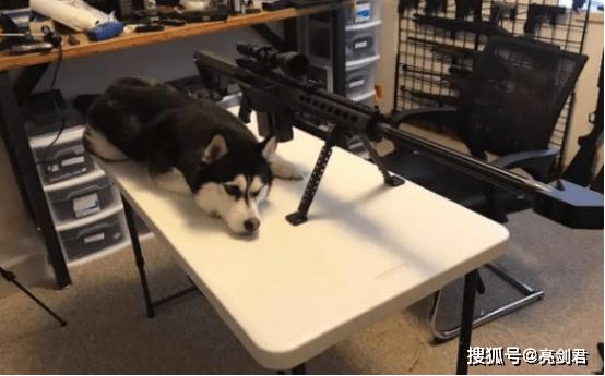 给你三把狙击枪,你会使用哪一把作战?