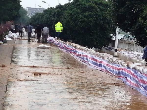 湖北沙洋县后港教育总支:筑堤排涝  保校园平安