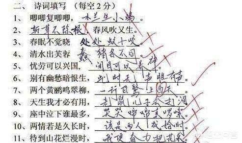 小学生奇葩作文(让老师吐血的搞笑作文)