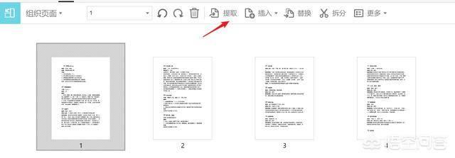 在pdf上进行修改文字(手机免费pdf编辑器)