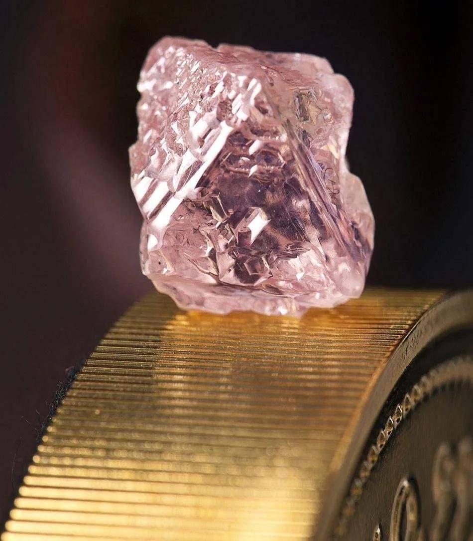 【大事件】全球最大粉钻矿区,前天真的关了!!