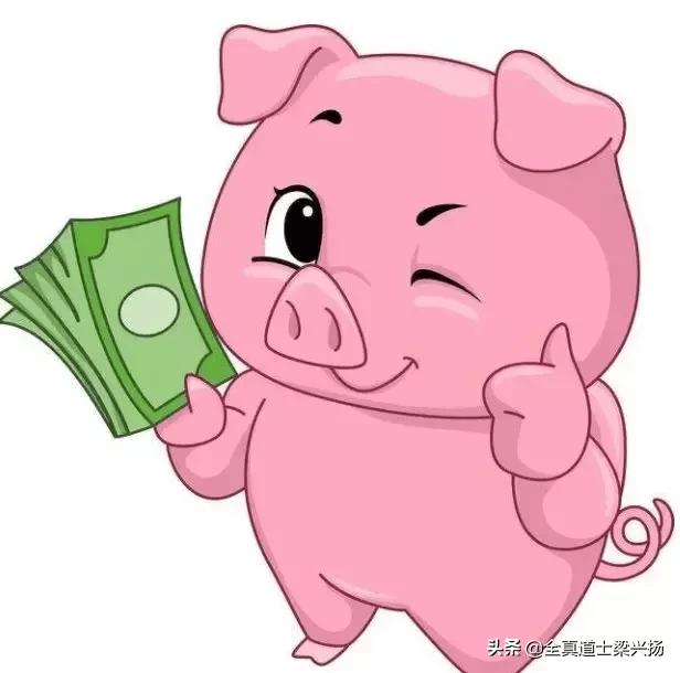 猪惊骨什么人不能戴 (猪惊骨有什么作用呢)插图(4)