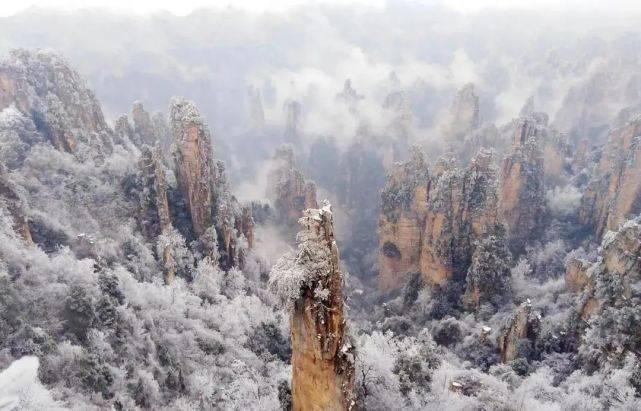 大美中国 | 冬日里的雾凇,美不胜收!