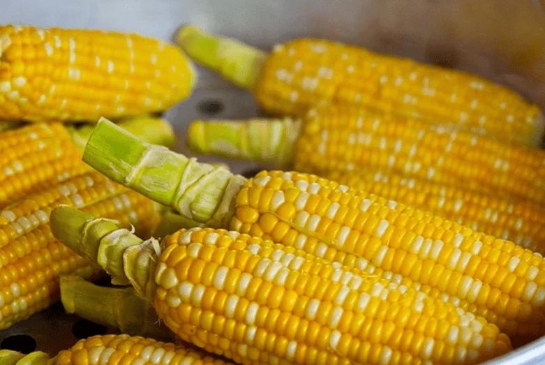 原玉米的营养在于玉米须?那你可能错过了最好的部分…