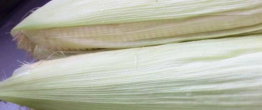 做水煮玉米,选新鲜玉米仍是老到的玉米?教您一招,往后别弄错了