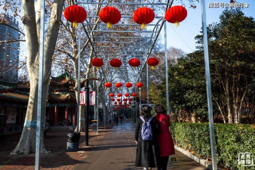 这个春节牛气:洛阳上榜全国十大景区旅游热点城市!