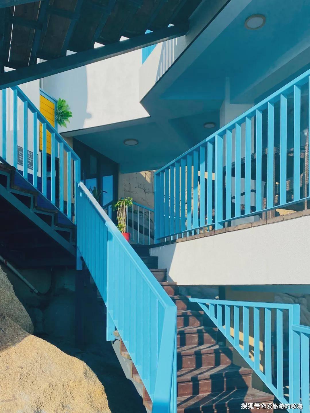 机票往返300+,比厦门文艺1000倍的沿海小城,藏着春天最美的海