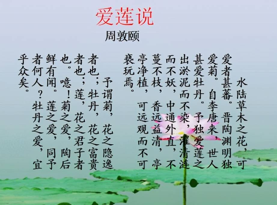 星辉娱乐招商-首页[1.1.0]