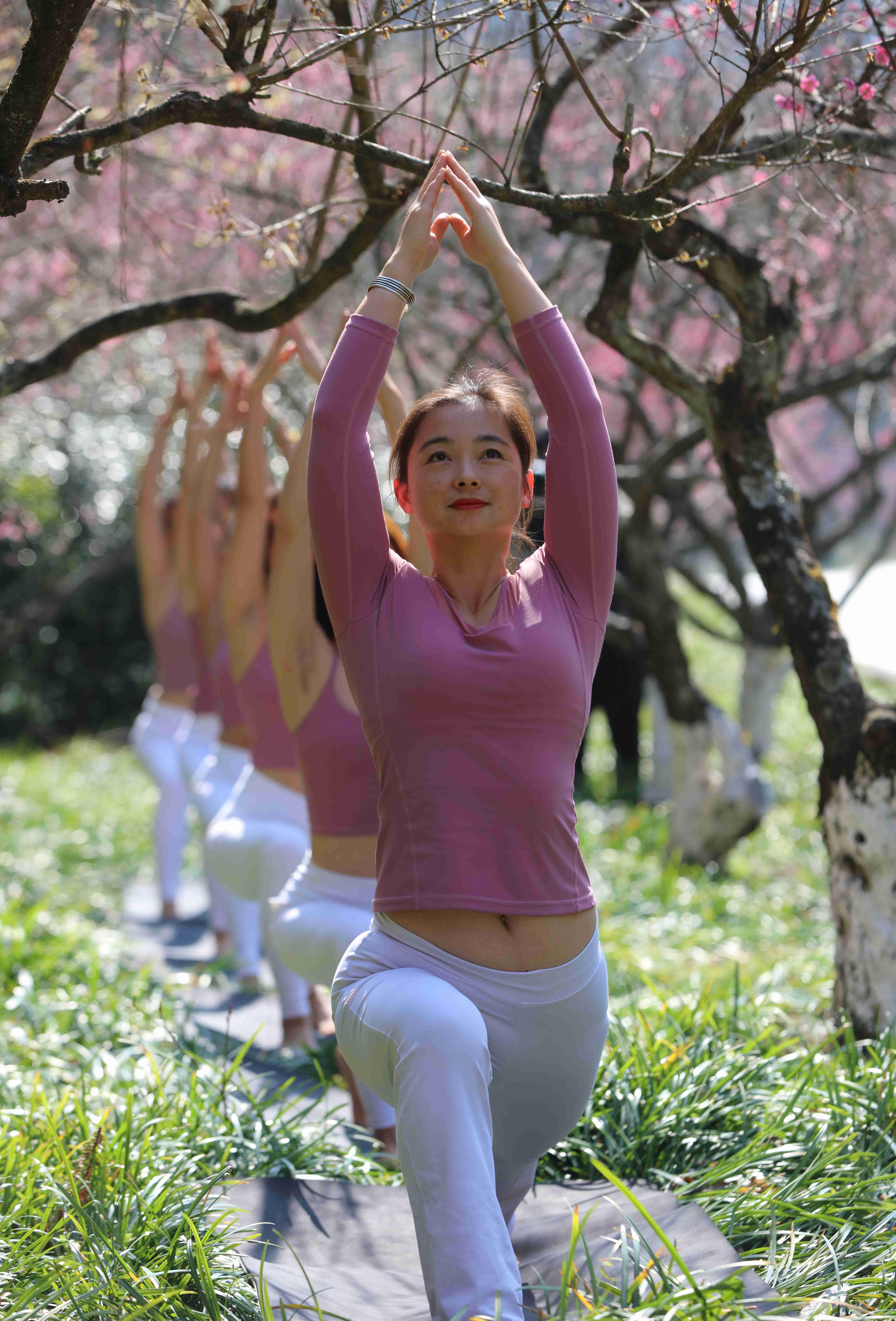 张家界国家森林公园:梅园秀瑜伽 乐享春光美