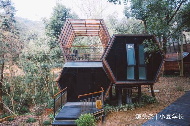 睡在大自然里,还可以畅快的在乐园里嬉戏,就在杭州开元森泊酒店