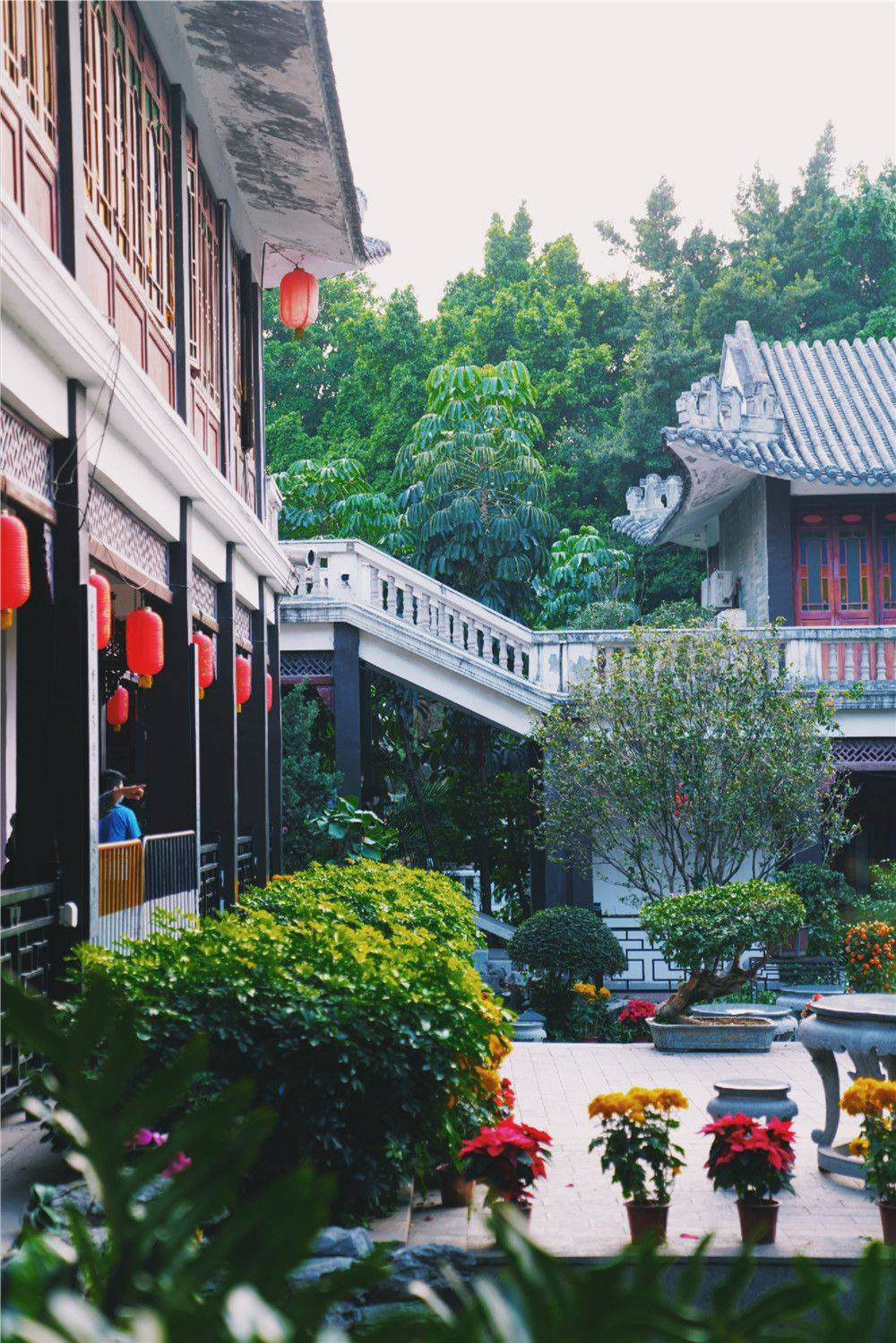 广州免费好去处,打卡岭南古风景点,感受唐代岭南人家韵味