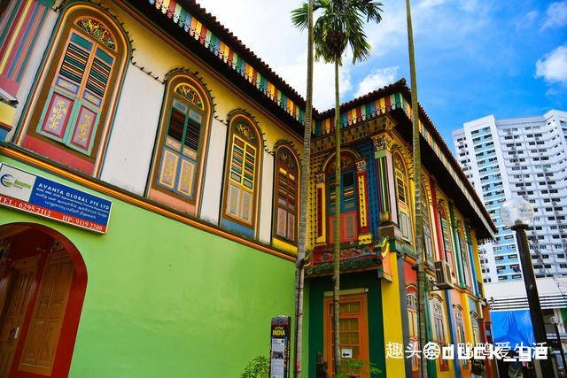新加坡最好拍照旅游街区,多元融合被称小印度,色彩斑斓太漂亮!