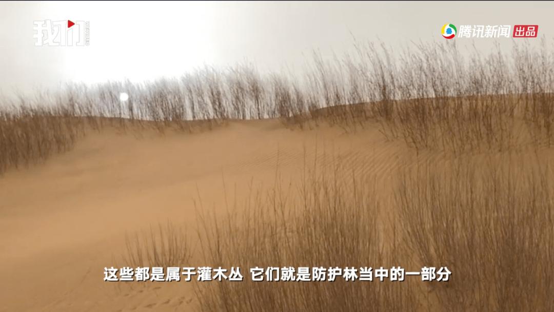 實探距北京最近沙漠:本土沙已擋,外來沙難防_沙塵