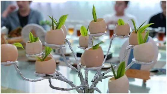 长城皮卡深耕西双版纳市场,助力勐海古树茶开采节