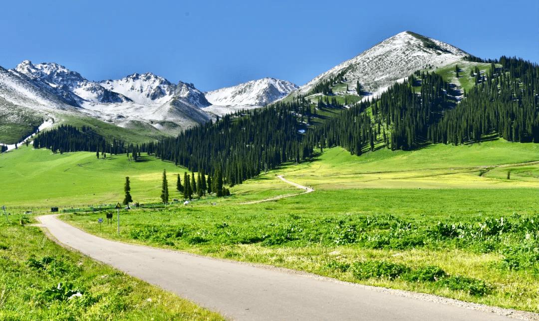 """横跨崇山峻岭,穿越深山峡谷,独库公路""""纵贯天山的景观大道"""""""